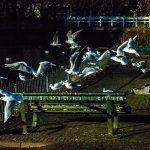 Are these Benches for the Birds? by Pablo Peña
